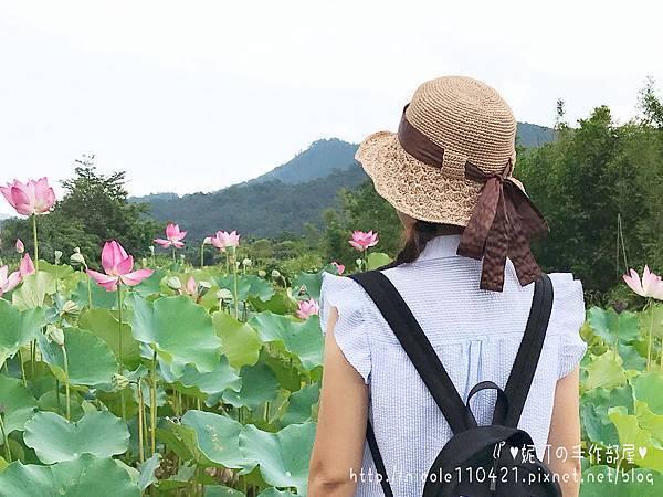 拉菲草帽no.6-4