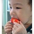 大口啃草莓