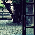 IMG_7558.JPG