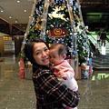 新竹喜來登耶誕樹