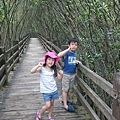 新豐紅樹林
