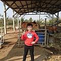 爸爸表哥的快樂農場