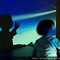 科學遊戲-光和影