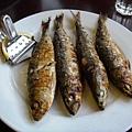 炭燒沙甸魚@小飛象葡國餐廳