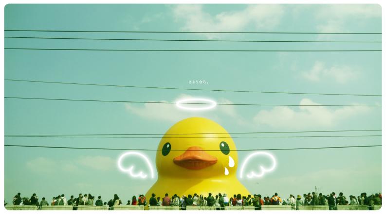 小鴨-11