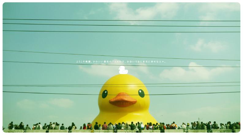 小鴨-01