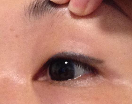 台中繡眼紀錄2.jpg