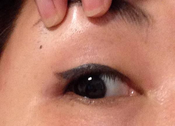 台中繡眼線紀錄.jpg
