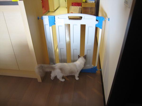 Lion很想進去