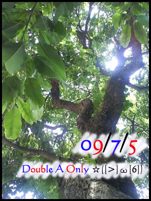 09/7/5 Double A Only ☆([>]ω[6])