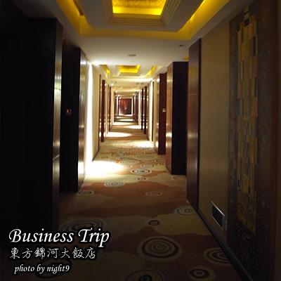 businesstrip-ogh-04.jpg