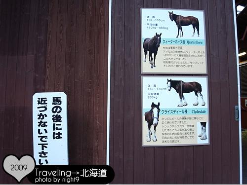 馬兒有四種