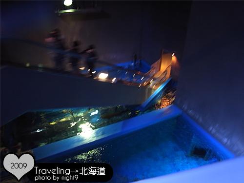 尼克斯樂園‧水族館