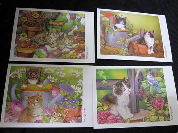 貓咪明信片四張入