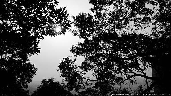 P1070372-黑與白.jpg