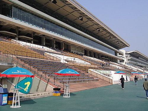 沙田馬場12