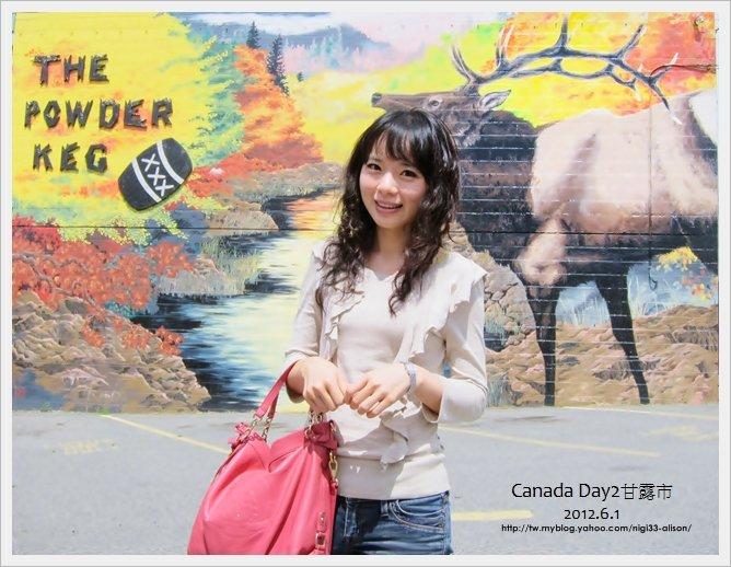 加拿大D2~希望鎮12
