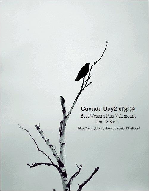 加拿大D2住宿14