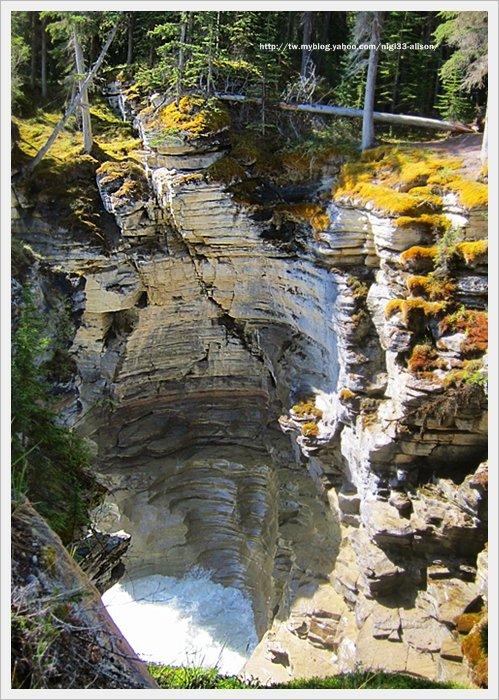 阿薩巴斯卡瀑布 (10)