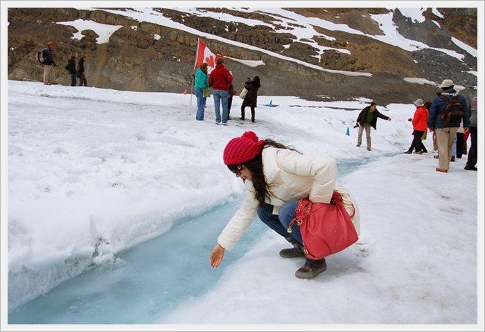 哥倫比亞冰原12