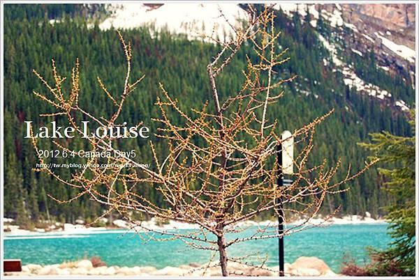 Lake Louise 18