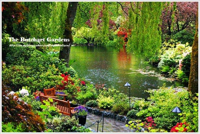 布查花園4