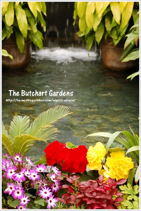 布查花園7