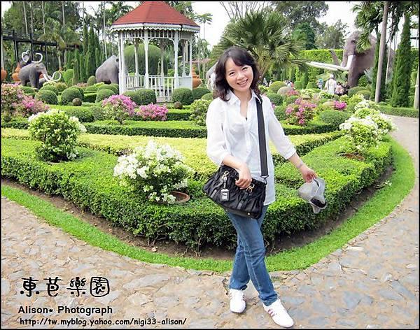 東芭樂園8