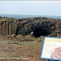 鯨魚洞02