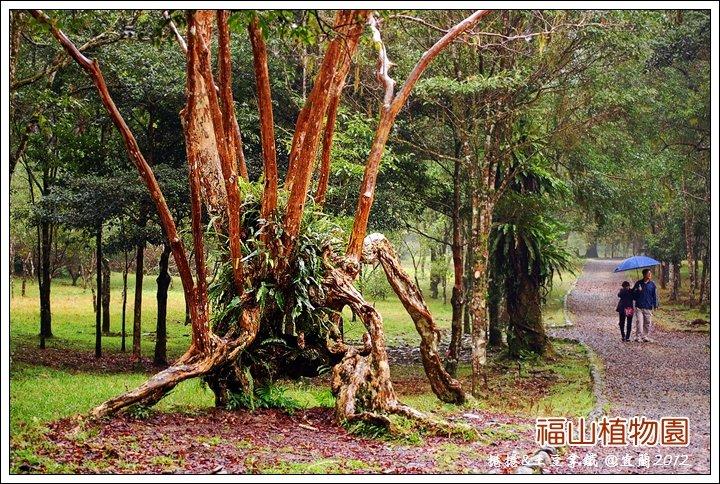 福山植物園10