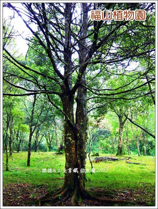 福山植物園11