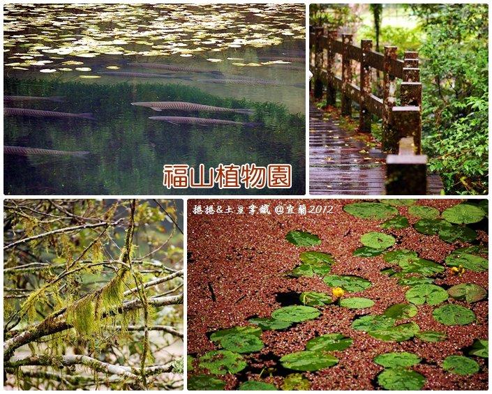 福山植物園13
