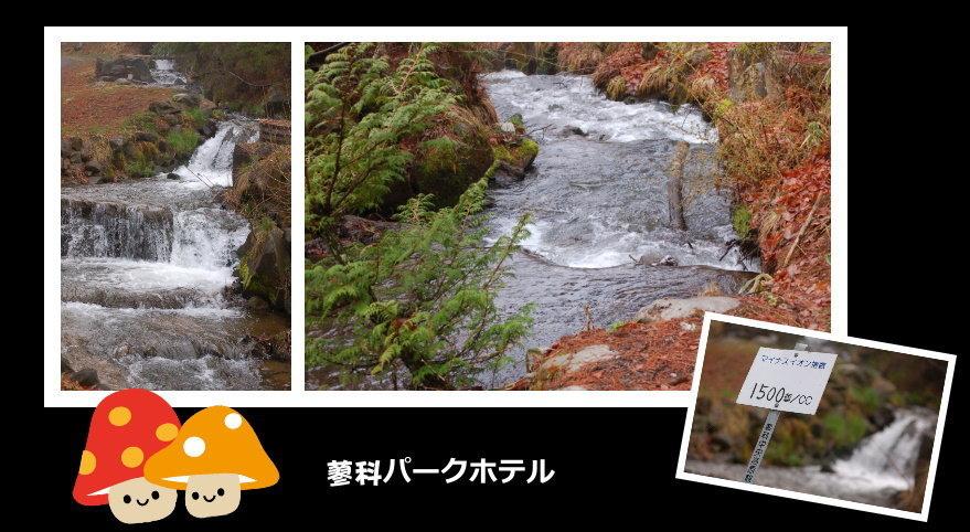 蓼科公園飯店02.jpg