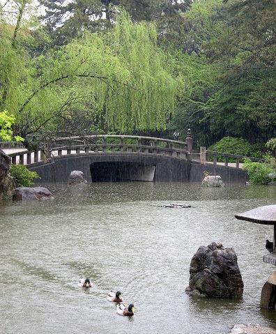 鶴舞公園02.jpg