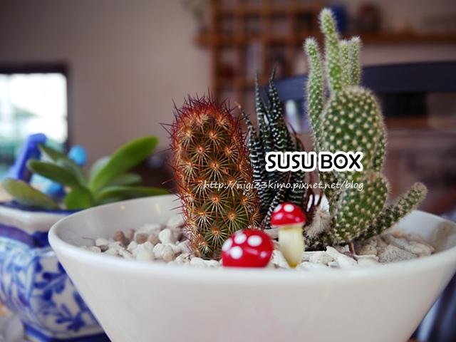 岡山SUSU BOX