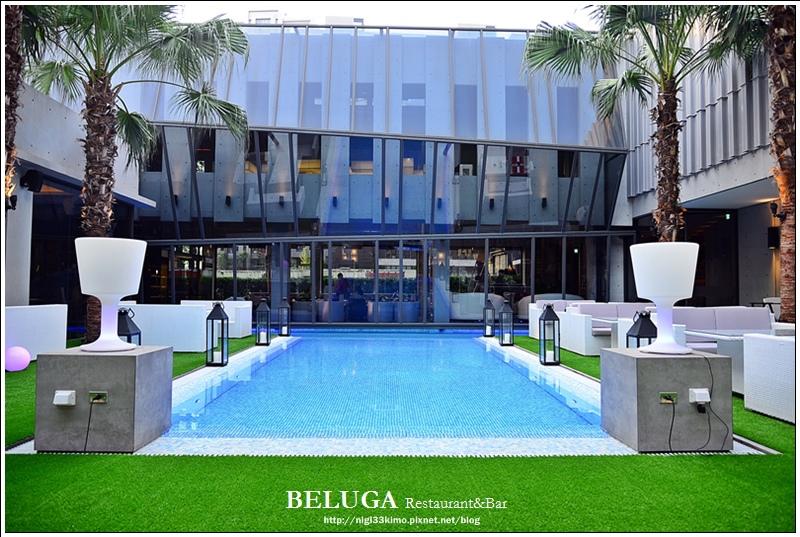 BELUGA19
