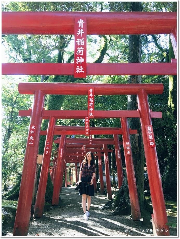青井阿蘇神社12.JPG
