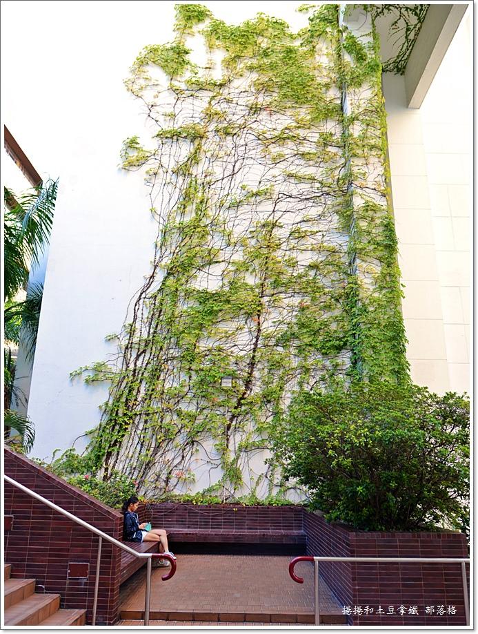 香港大學20.JPG