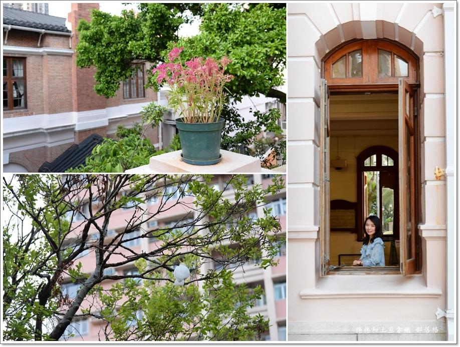 香港大學25.jpg