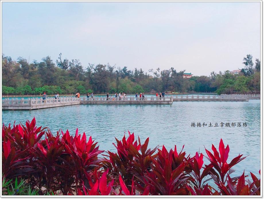 澄清湖九曲橋