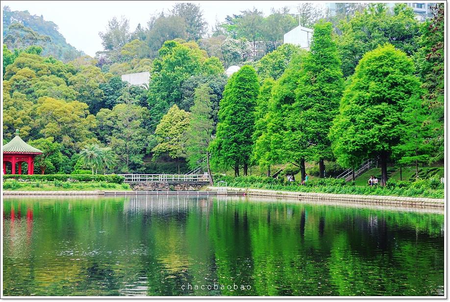 香港未圓湖.JPG