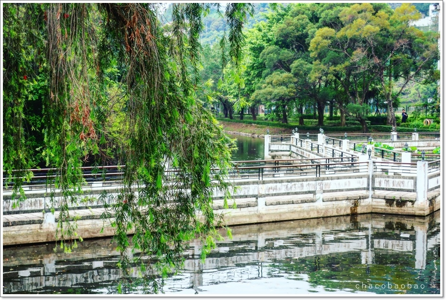 香港未圓湖3.JPG