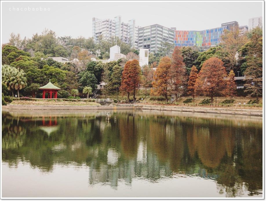 香港未圓湖5.jpg