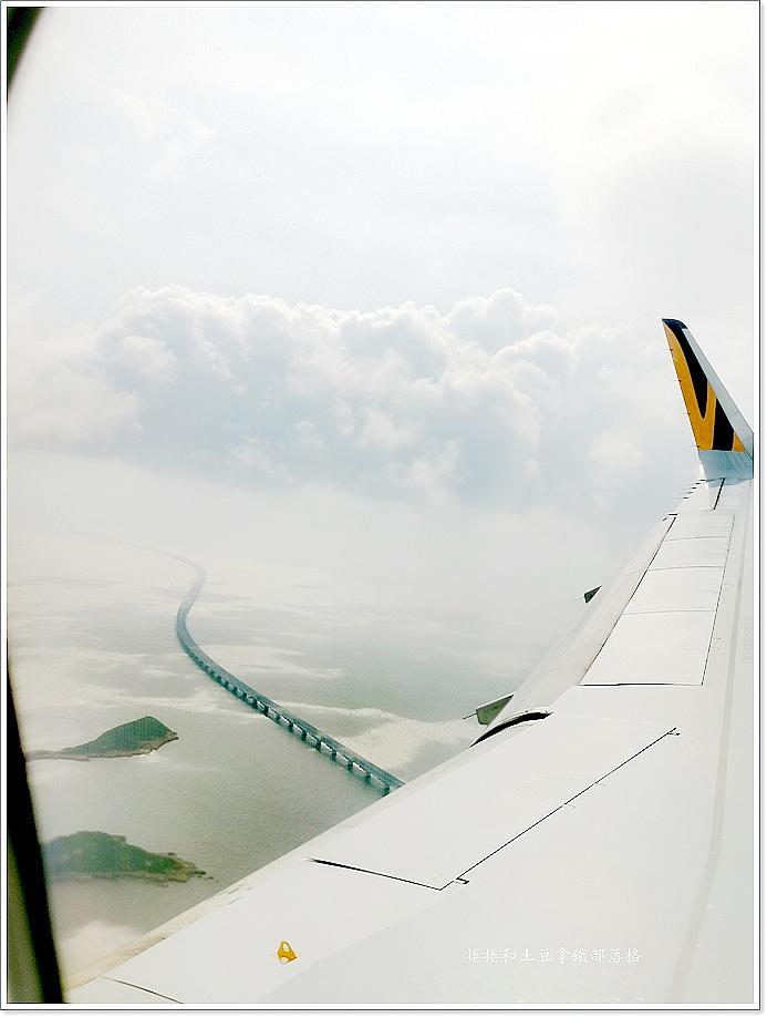 台灣虎航-11.jpg