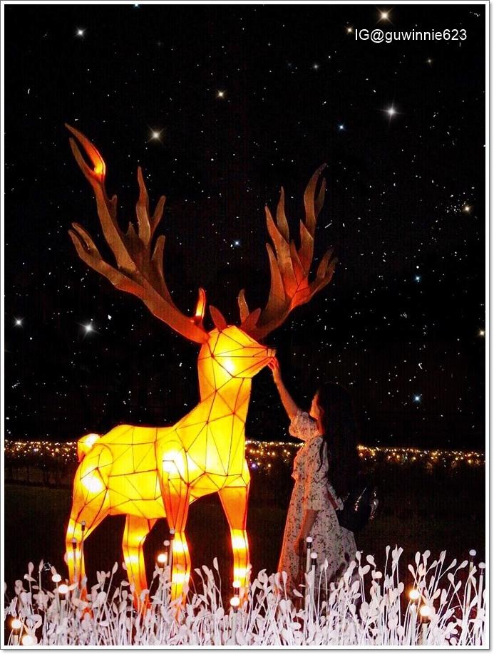 屏東公園聖誕布置5.jpg