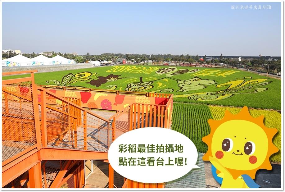 2020屏東彩繪稻田-3