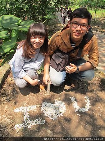 0412_荷苞山 桐花祭