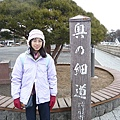 2010日本東北伊豆賞櫻之旅 100.JPG