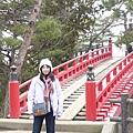 2010日本東北伊豆賞櫻之旅 127.JPG
