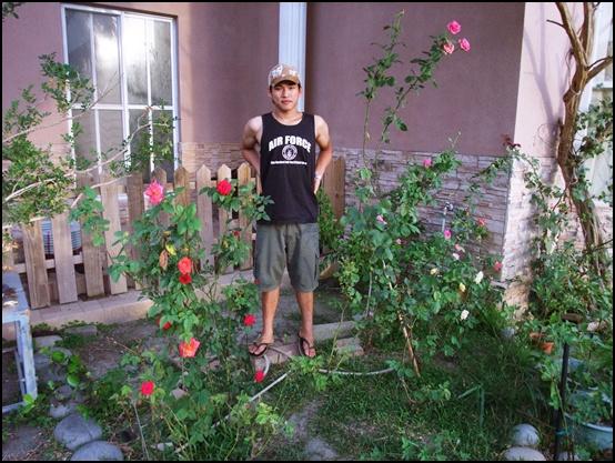 家裡的花可以多看看